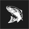 Leaping Fish Logo