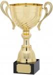 Gold Coloured Presentation Cups On Black Marble Base