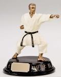 Karate Trophy Resin