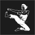 Kickboxer Logo