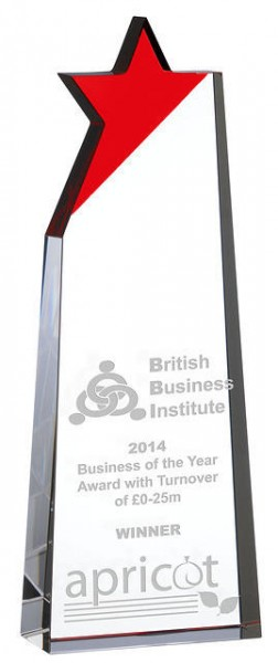 Crystal Awards Supplied In Presentation Box. Price Includes Engraving