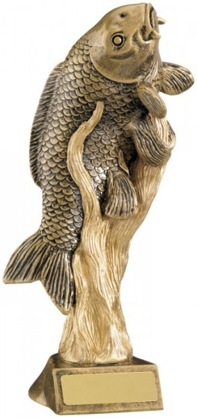 Resin Fishing Trophies in Antique Gold Coloured Finish 1
